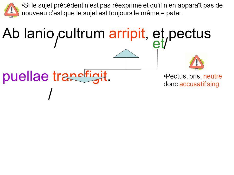 Ab lanio cultrum arripit, et pectus puellae transfigit.