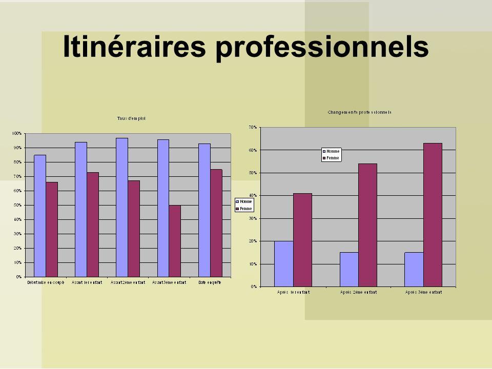 Itinéraires professionnels