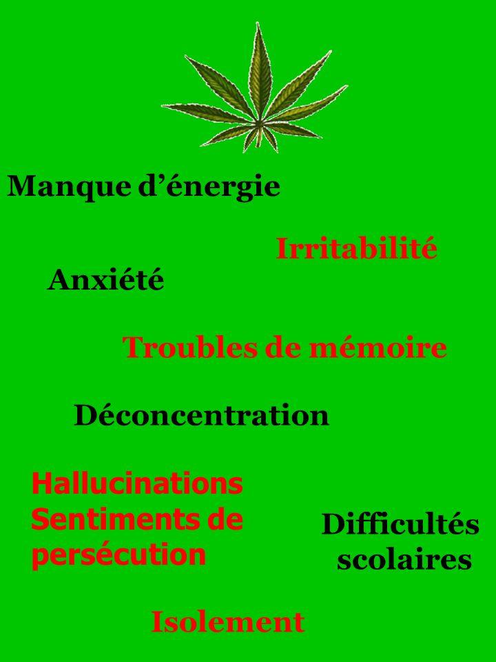 Manque dénergie Anxiété Irritabilité Troubles de mémoire Déconcentration Hallucinations Sentiments de persécution Isolement Difficultés scolaires