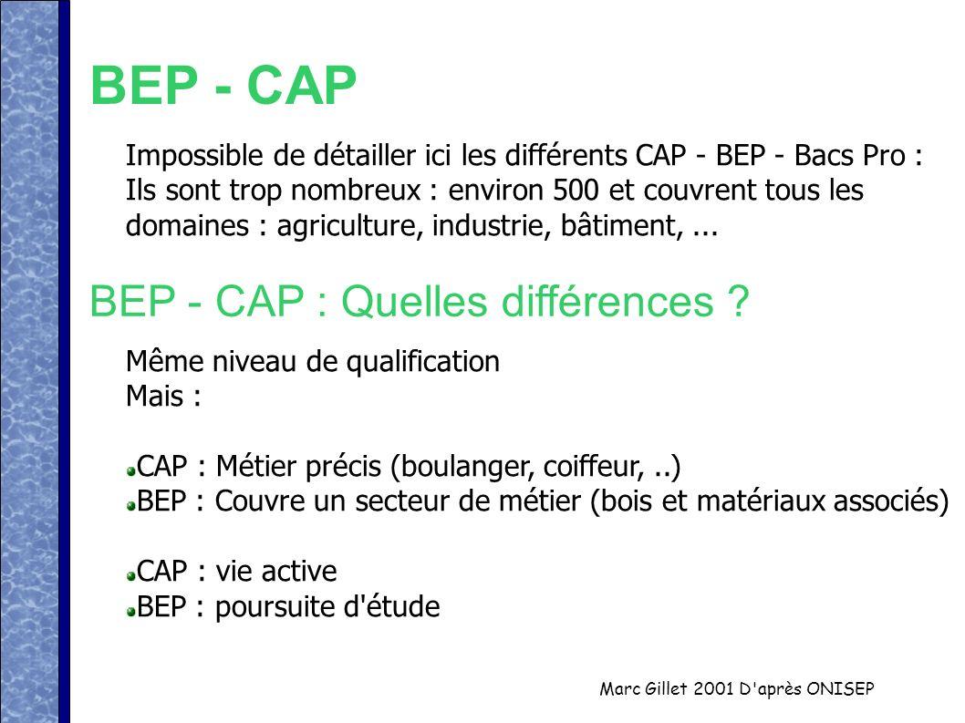 Marc Gillet 2001 D'après ONISEP BEP - CAP Impossible de détailler ici les différents CAP - BEP - Bacs Pro : Ils sont trop nombreux : environ 500 et co
