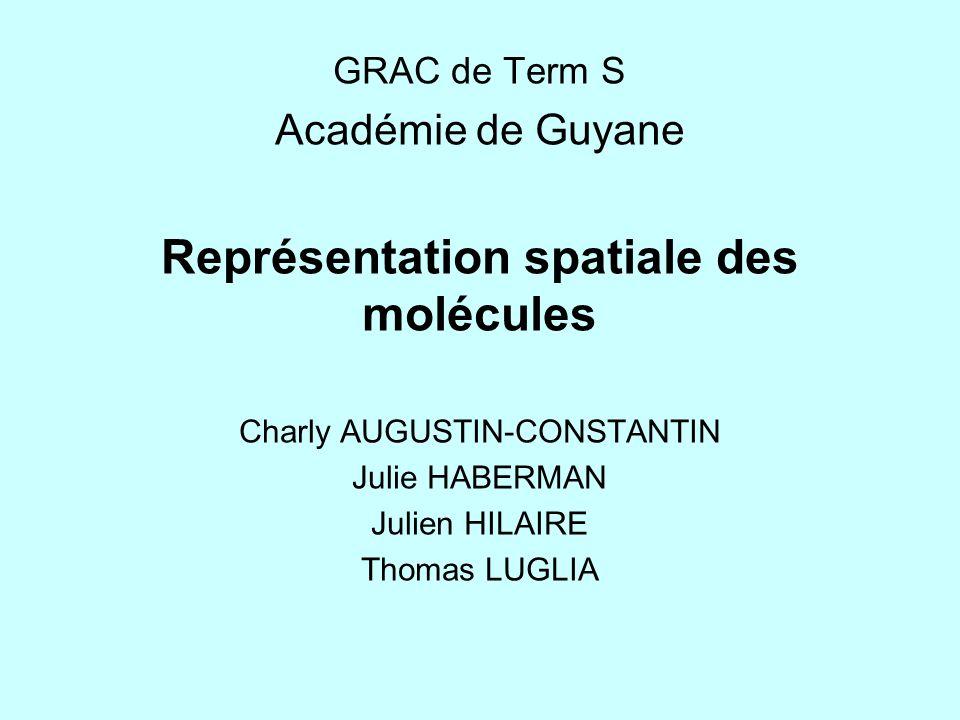 Thème : Représentation spatiale des molécules 1.Insertion du thème dans le programme de T erm S.