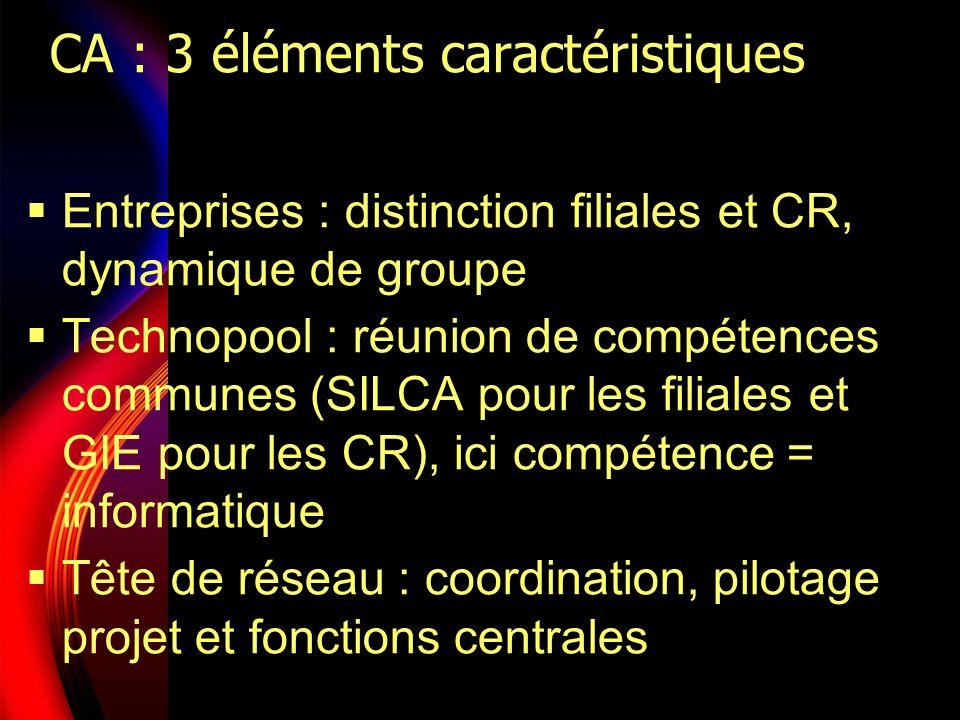 CA : 3 éléments caractéristiques Entreprises : distinction filiales et CR, dynamique de groupe Technopool : réunion de compétences communes (SILCA pou