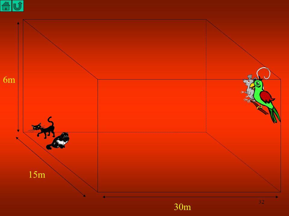 31 Dans l'angle d'un entrepôt de forme parallélépipédique, deux chats observent un oiseau et une souris qui ont pris position sur un reposoir près du