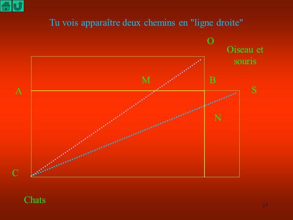 36 Parmi les multiples chemins possibles lequel est le plus court ? Pour étudier ce problème, tu peux réaliser le patron du solide au 1/200. Les dimen