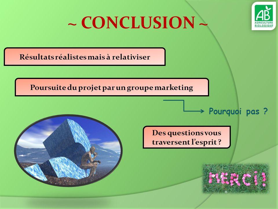~ CONCLUSION ~ Poursuite du projet par un groupe marketing Pourquoi pas ? Résultats réalistes mais à relativiser Des questions vous traversent lesprit
