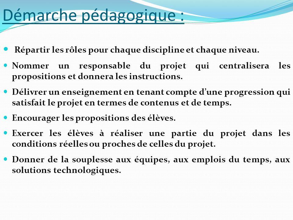 Démarche pédagogique : Répartir les rôles pour chaque discipline et chaque niveau. Nommer un responsable du projet qui centralisera les propositions e
