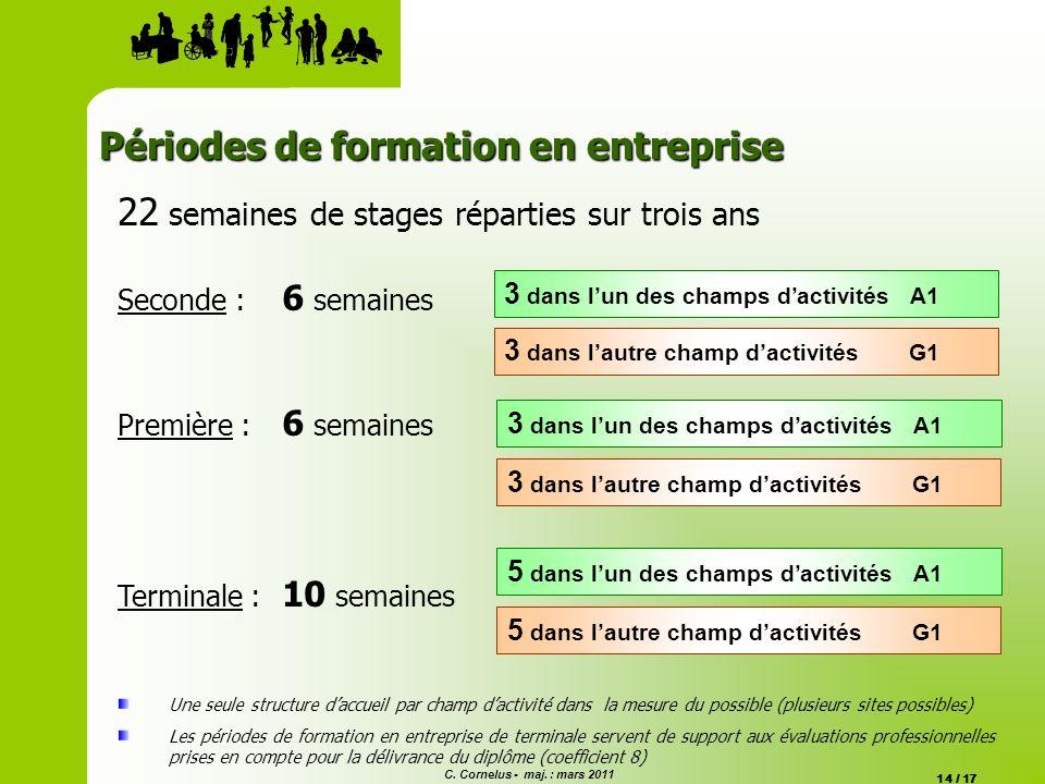 C. Cornelus - maj. : mars 2011 14 / 17 Périodes de formation en entreprise 22 semaines de stages réparties sur trois ans Seconde : 6 semaines Première