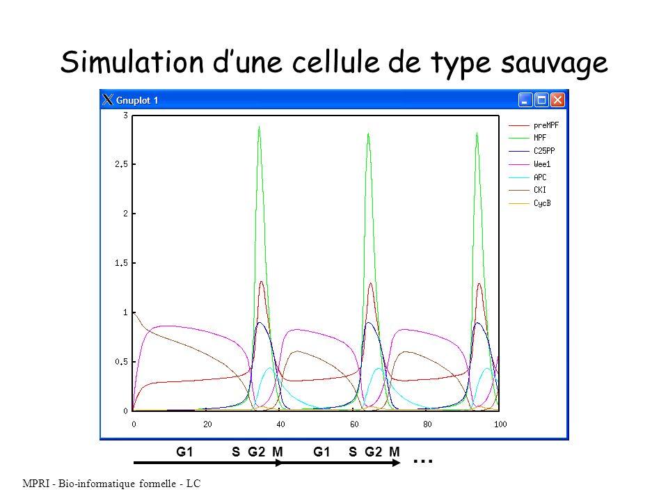 MPRI - Bio-informatique formelle - LC Simulation dune cellule de type sauvage G1S G2 MG1S G2 M …