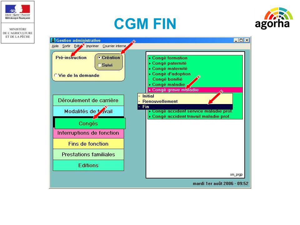 17 CGM FIN