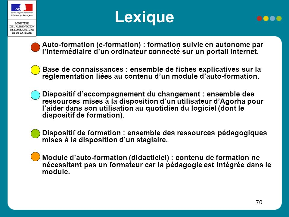 70 Lexique Auto-formation (e-formation) : formation suivie en autonome par lintermédiaire dun ordinateur connecté sur un portail internet.
