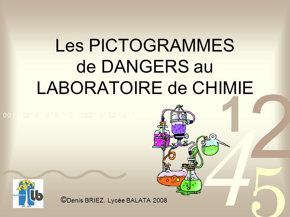 Les PICTOGRAMMES de DANGERS au LABORATOIRE de CHIMIE © Denis BRIEZ. Lycée BALATA 2008