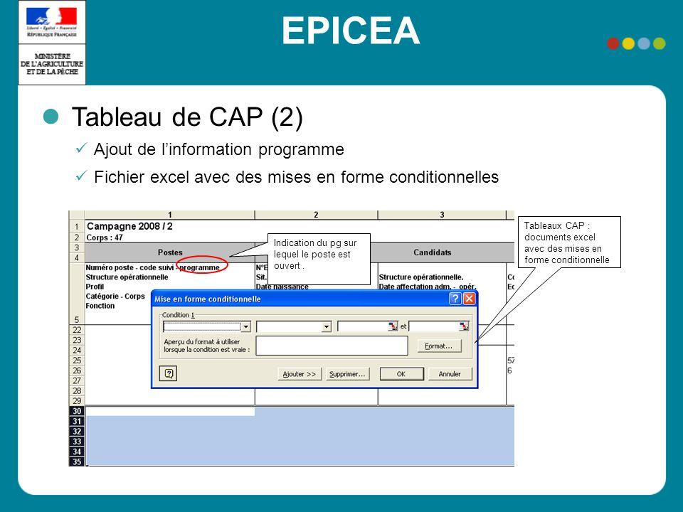 EPICEA Tableau de CAP (2) Ajout de linformation programme Fichier excel avec des mises en forme conditionnelles Indication du pg sur lequel le poste e