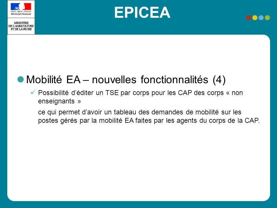 EPICEA Mobilité EA – nouvelles fonctionnalités (4) Possibilité déditer un TSE par corps pour les CAP des corps « non enseignants » ce qui permet davoi