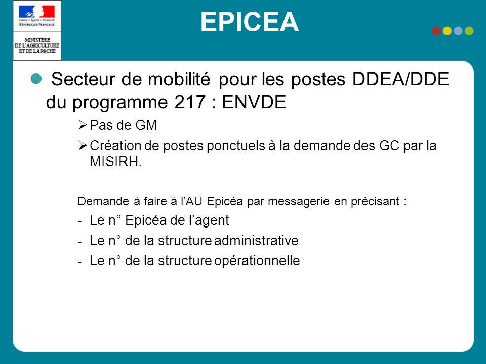 EPICEA Secteur de mobilité pour les postes DDEA/DDE du programme 217 : ENVDE Pas de GM Création de postes ponctuels à la demande des GC par la MISIRH.