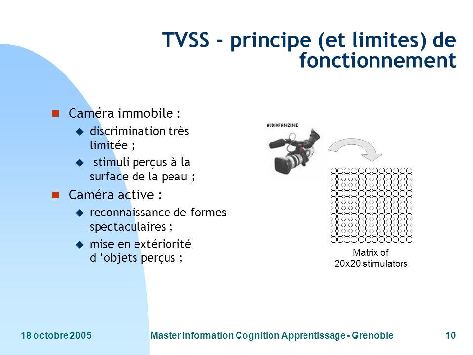 18 octobre 2005Master Information Cognition Apprentissage - Grenoble10 Matrix of 20x20 stimulators TVSS - principe (et limites) de fonctionnement n Ca