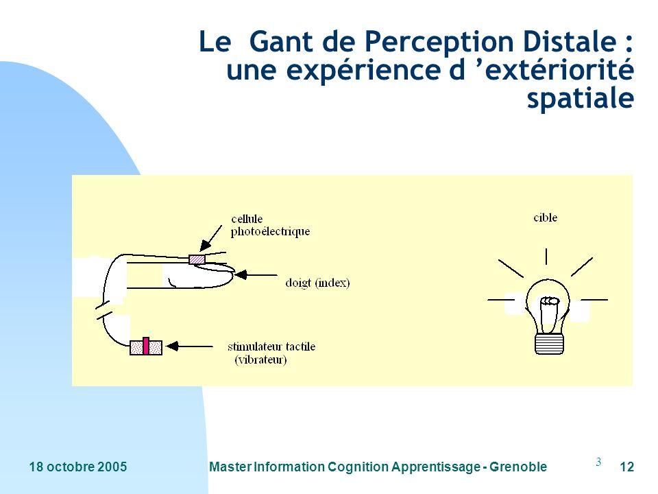 18 octobre 2005Master Information Cognition Apprentissage - Grenoble12 3 Le Gant de Perception Distale : une expérience d extériorité spatiale