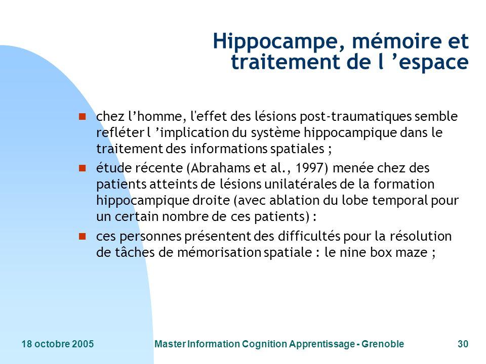18 octobre 2005Master Information Cognition Apprentissage - Grenoble30 Hippocampe, mémoire et traitement de l espace n chez lhomme, l'effet des lésion