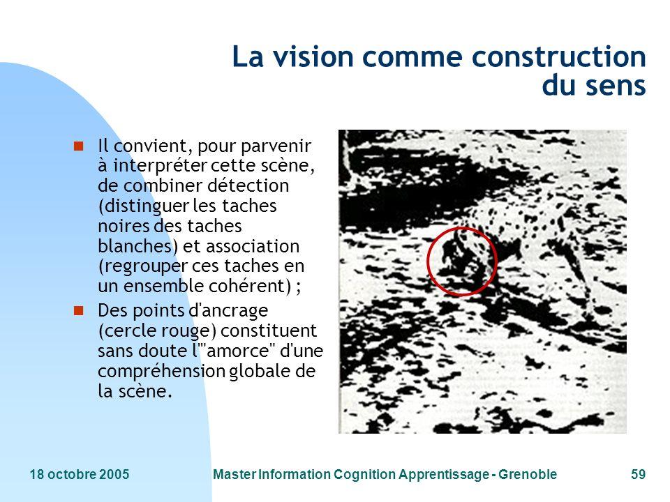 18 octobre 2005Master Information Cognition Apprentissage - Grenoble59 La vision comme construction du sens n Il convient, pour parvenir à interpréter