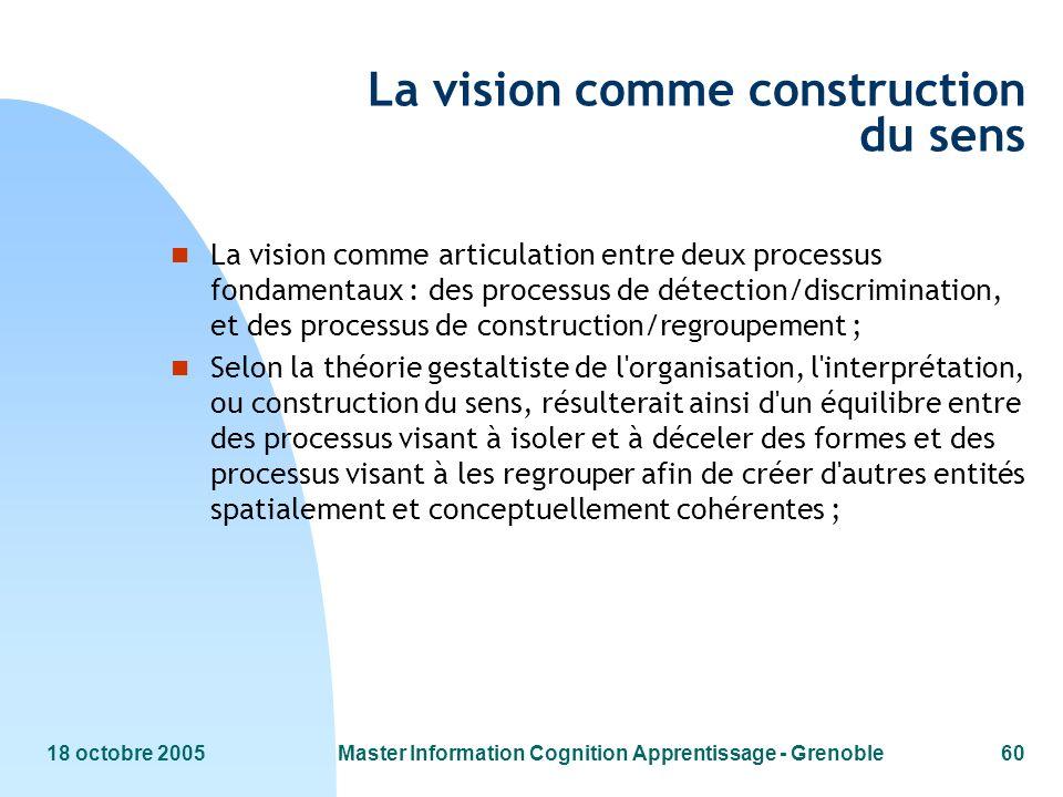 18 octobre 2005Master Information Cognition Apprentissage - Grenoble60 La vision comme construction du sens n La vision comme articulation entre deux