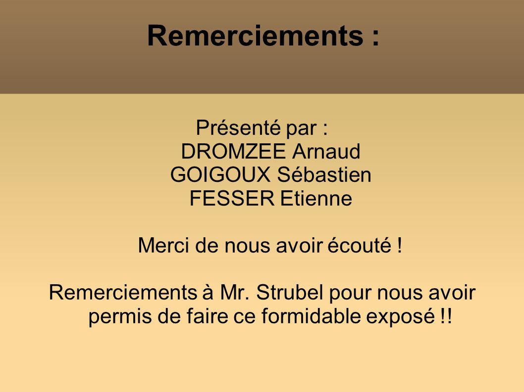 Remerciements : Présenté par : DROMZEE Arnaud GOIGOUX Sébastien FESSER Etienne Merci de nous avoir écouté ! Remerciements à Mr. Strubel pour nous avoi