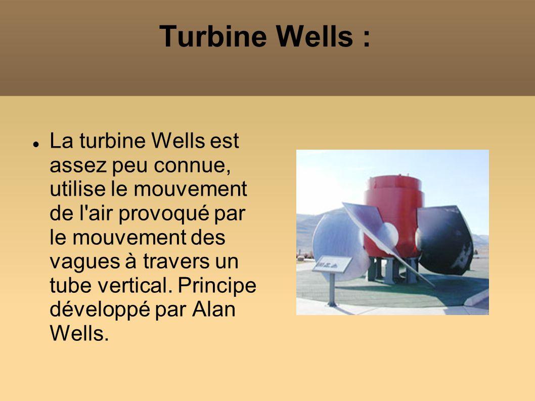 Turbine Wells : La turbine Wells est assez peu connue, utilise le mouvement de l'air provoqué par le mouvement des vagues à travers un tube vertical.