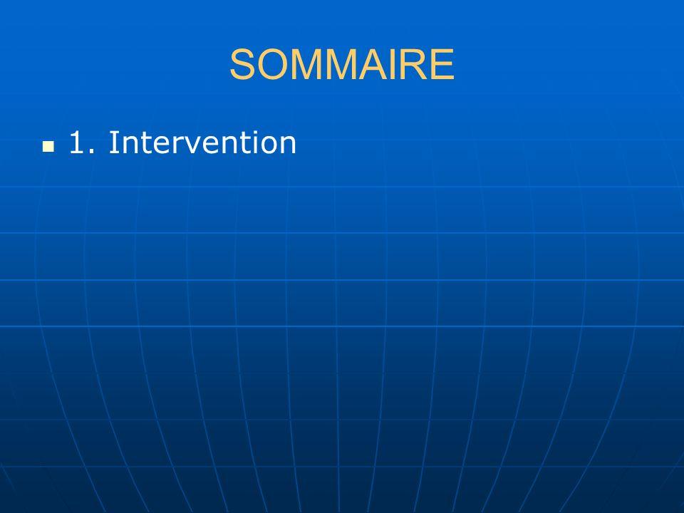 SOMMAIRE 1. Intervention