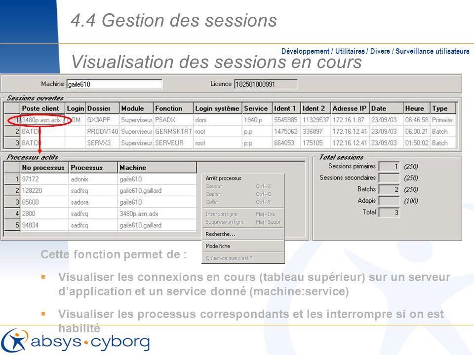 Visualisation des sessions en cours Cette fonction permet de : Visualiser les connexions en cours (tableau supérieur) sur un serveur dapplication et u