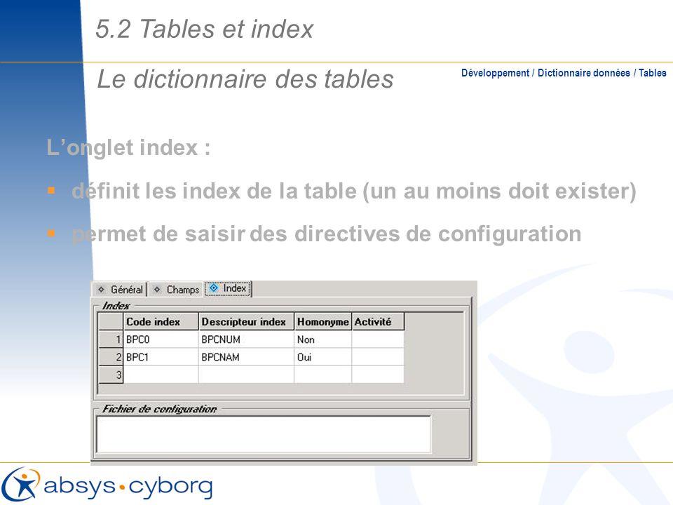 Le dictionnaire des tables Longlet index : définit les index de la table (un au moins doit exister) permet de saisir des directives de configuration D