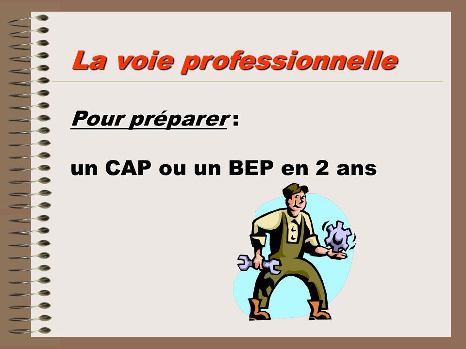 Pour préparer : un CAP ou un BEP en 2 ans La voie professionnelle