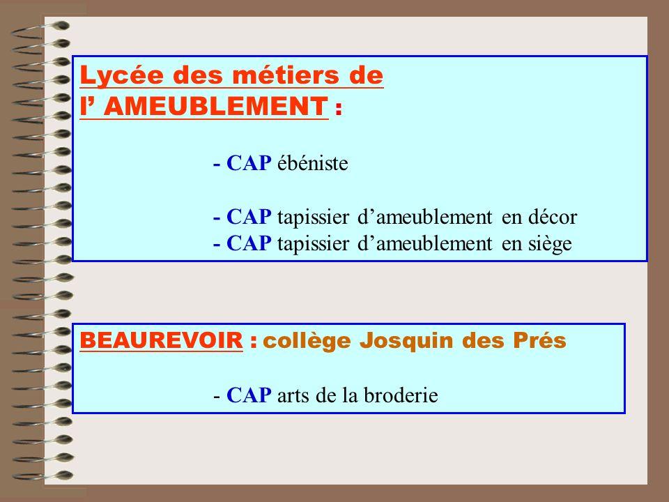 BEAUREVOIR : collège Josquin des Prés - CAP arts de la broderie Lycée des métiers de l AMEUBLEMENT : - CAP ébéniste - CAP tapissier dameublement en dé