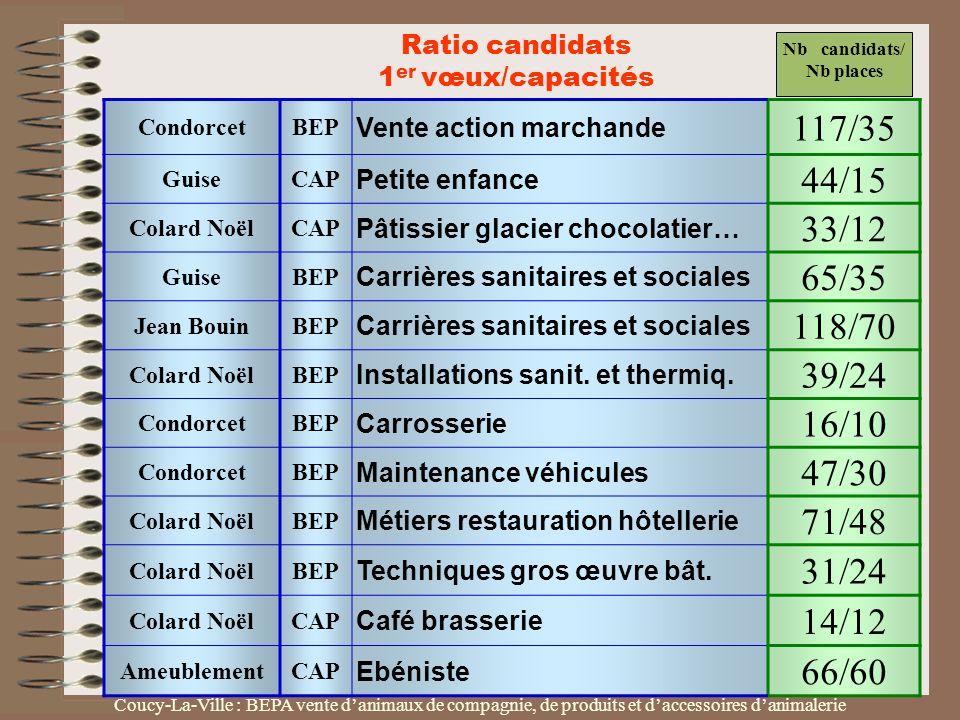 CondorcetBEP Vente action marchande 117/35 GuiseCAP Petite enfance 44/15 Colard NoëlCAP Pâtissier glacier chocolatier… 33/12 GuiseBEP Carrières sanita