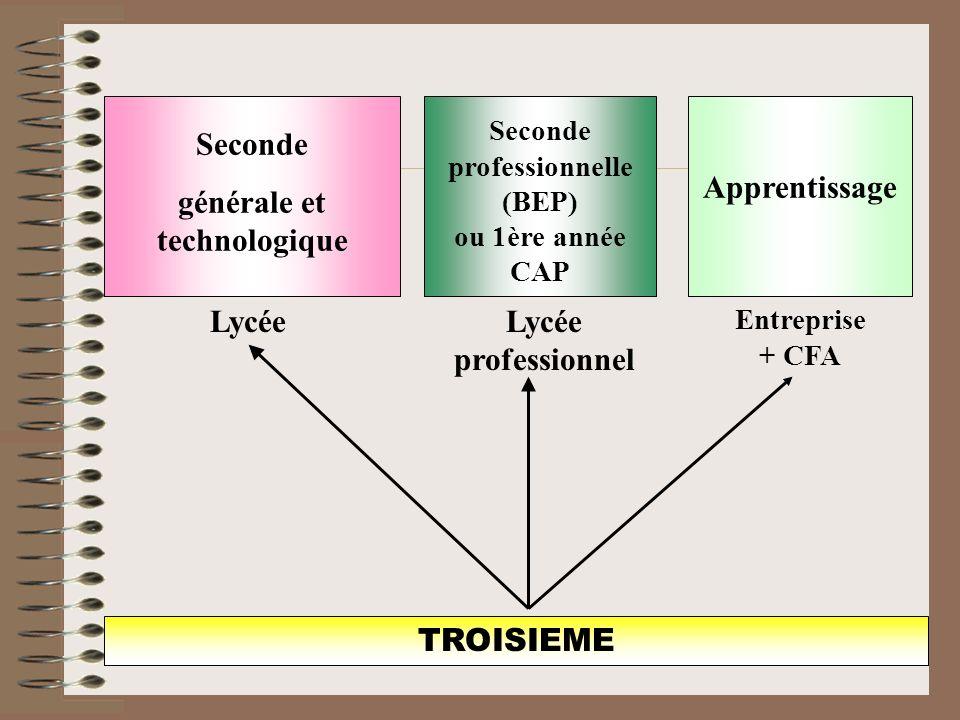 TROISIEME Seconde générale et technologique Lycée Apprentissage Entreprise + CFA Seconde professionnelle (BEP) ou 1ère année CAP Lycée professionnel