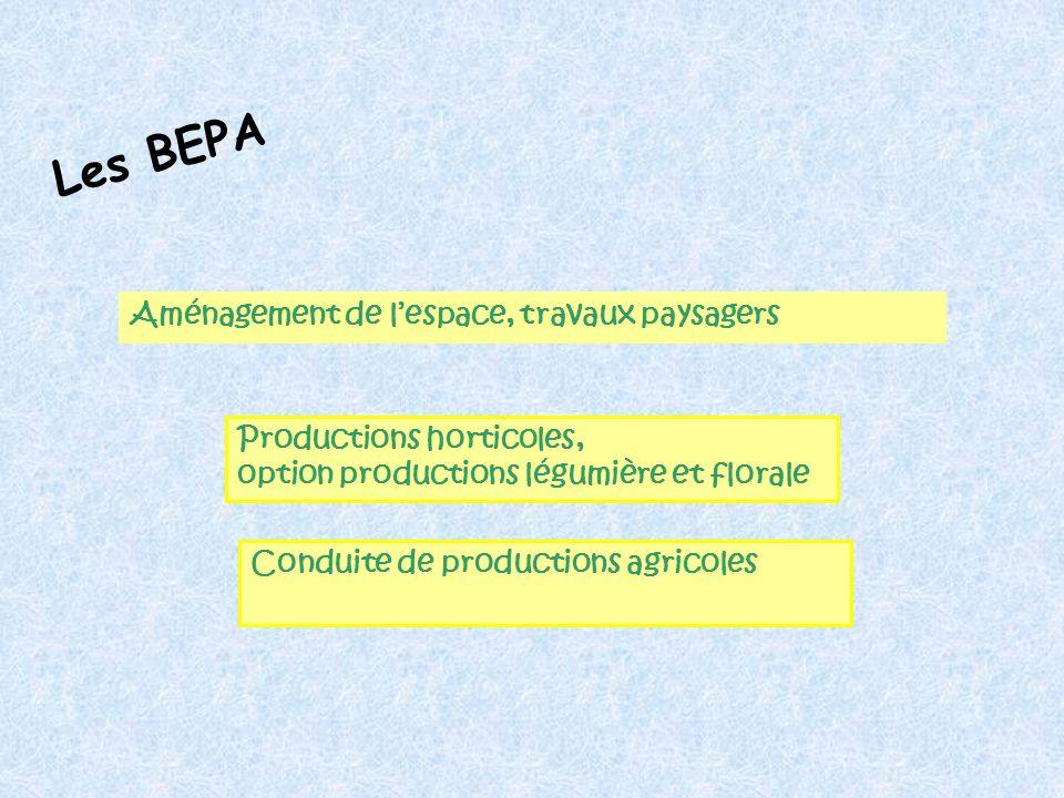 Aménagement de lespace, travaux paysagers Productions horticoles, option productions légumière et florale Les BEPA Conduite de productions agricoles