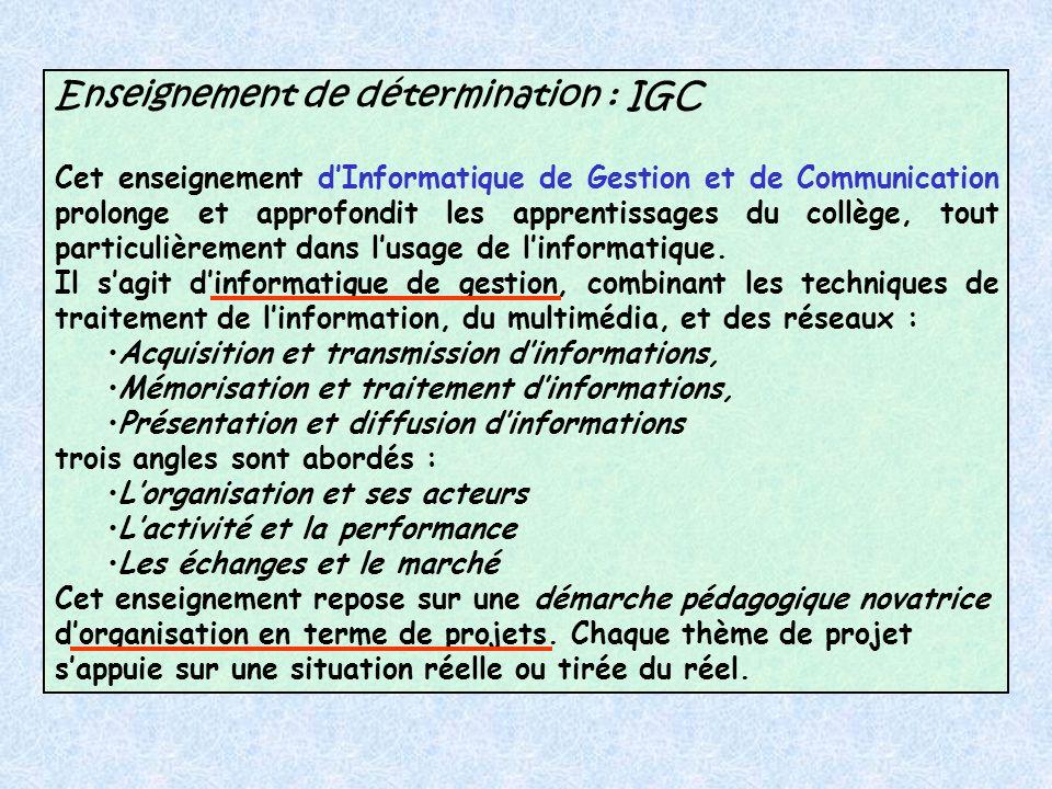 Enseignement de détermination : IGC Cet enseignement dInformatique de Gestion et de Communication prolonge et approfondit les apprentissages du collège, tout particulièrement dans lusage de linformatique.