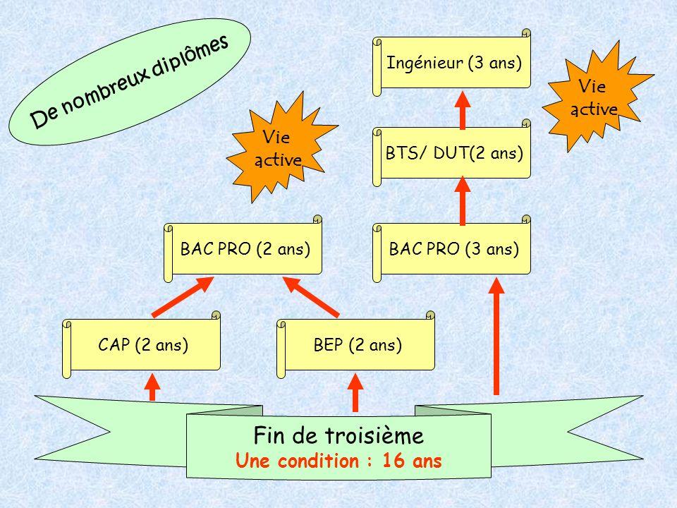 De nombreux diplômes CAP (2 ans) BAC PRO (3 ans)BAC PRO (2 ans) BEP (2 ans) BTS/ DUT(2 ans) Ingénieur (3 ans) Fin de troisième Une condition : 16 ans Vie active Vie active