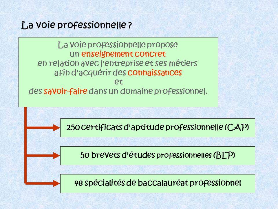 CAP BEP Vie active Des études courtes : 2 ou 3 ans Bac Pro