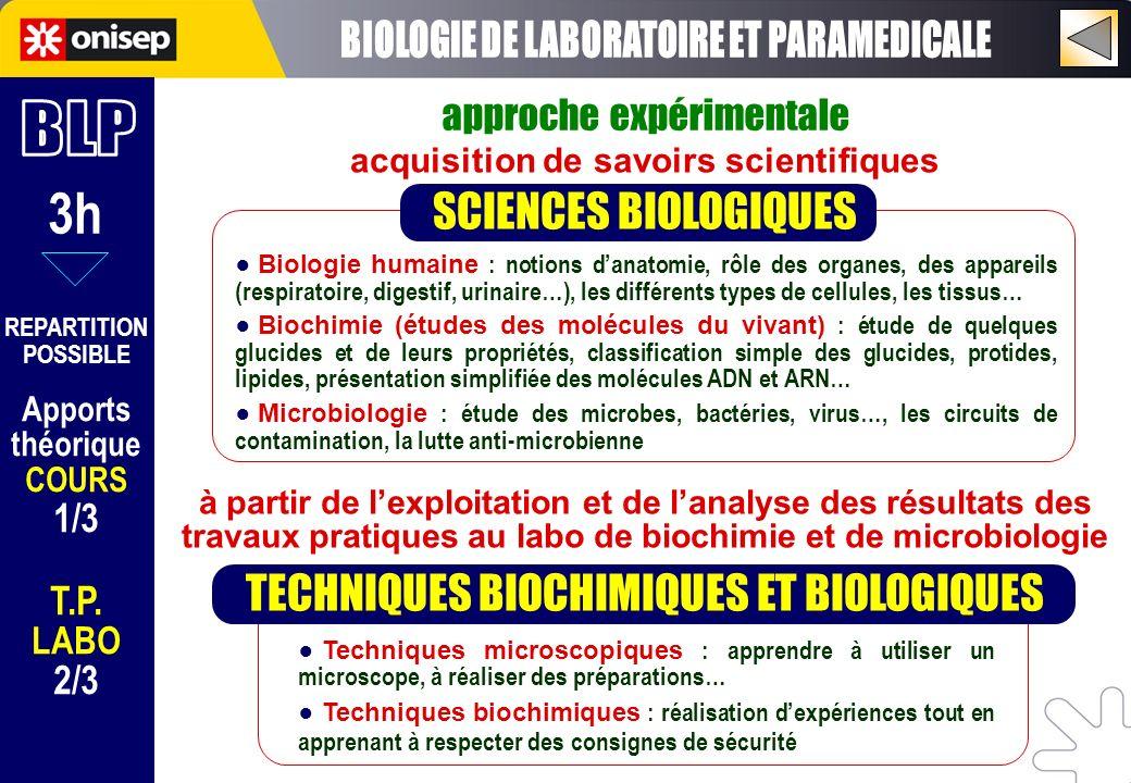 3h REPARTITION POSSIBLE Apports théorique COURS 1/3 T.P. LABO 2/3 Techniques microscopiques : apprendre à utiliser un microscope, à réaliser des prépa