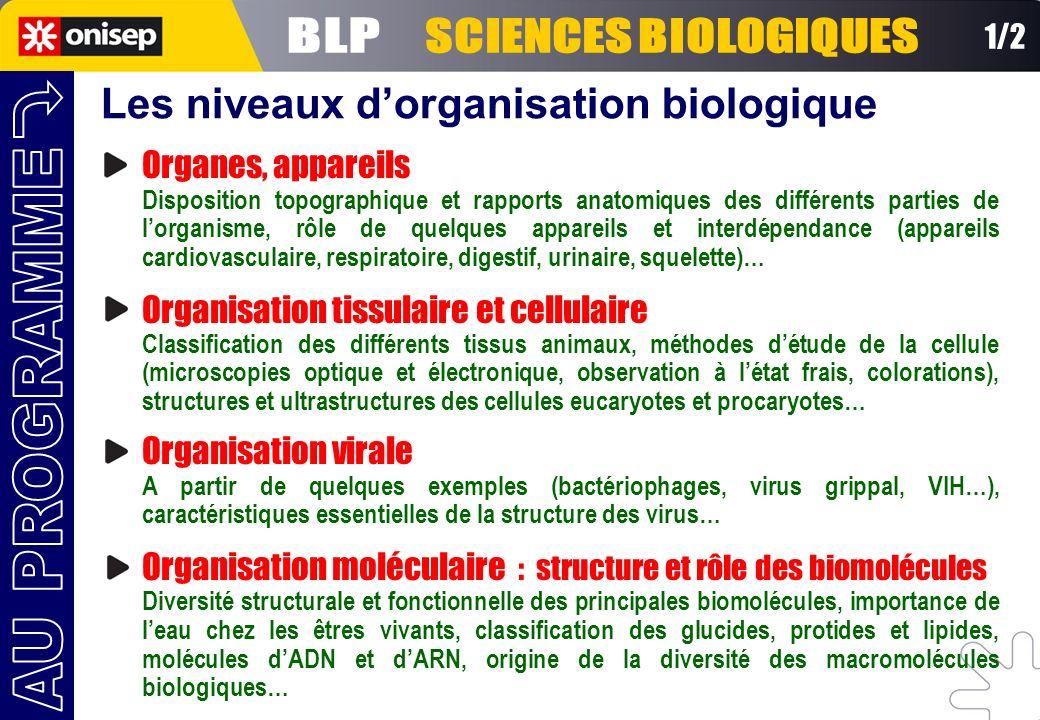 1/2 Les niveaux dorganisation biologique Organes, appareils Disposition topographique et rapports anatomiques des différents parties de lorganisme, rô