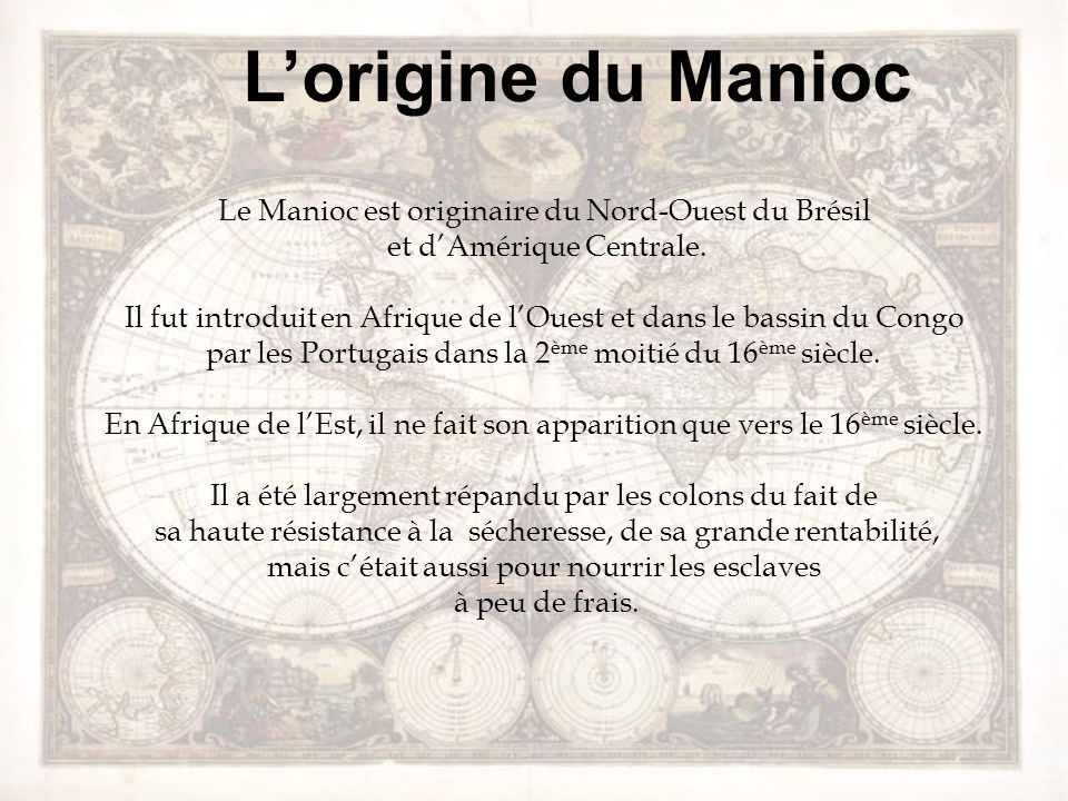 Lorigine du Manioc Le Manioc est originaire du Nord-Ouest du Brésil et dAmérique Centrale. Il fut introduit en Afrique de lOuest et dans le bassin du