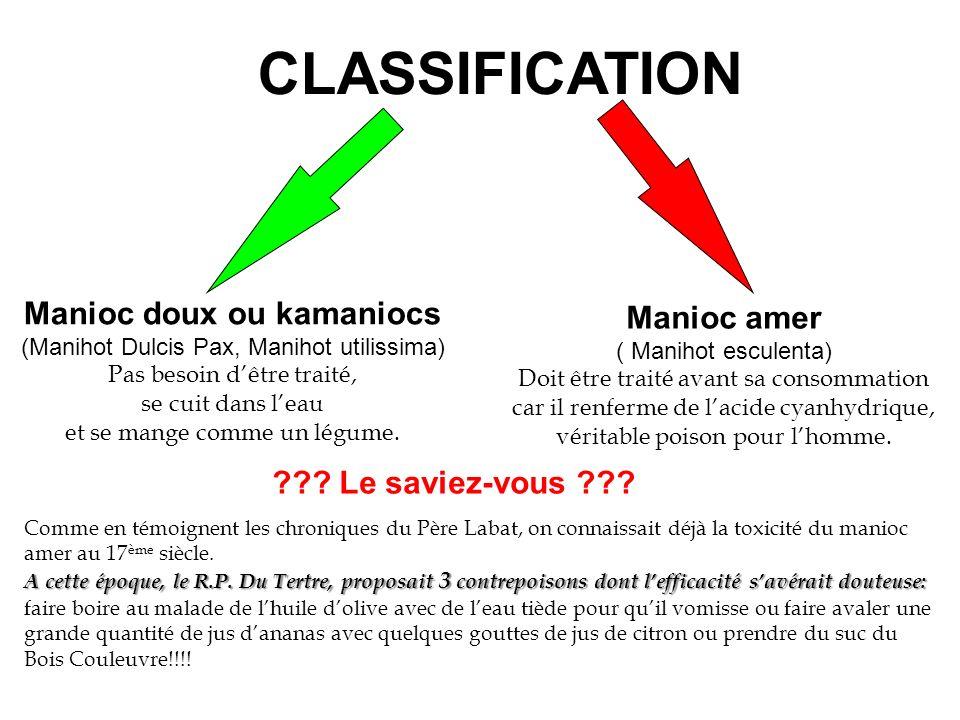 CLASSIFICATION Manioc doux ou kamaniocs (Manihot Dulcis Pax, Manihot utilissima) Pas besoin dêtre traité, se cuit dans leau et se mange comme un légum