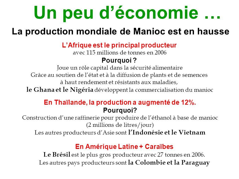 La Thaïlande est le 1er exportateur mondial de manioc La Chine est le 1er importateur mondial de manioc Pour diminuer leur dépendance vis-à-vis de limportation du blé, depuis juillet 2006 le Brésil et le Nigéria incluent 10 % de farine de manioc dans la production du pain Sur le marché de limportation du manioc pour nourrir les animaux, soit 59 millions de tonnes / an, on retrouve le Brésil, la Colombie, le Nigéria, la Chine, les Pays-bas et lEspagne.