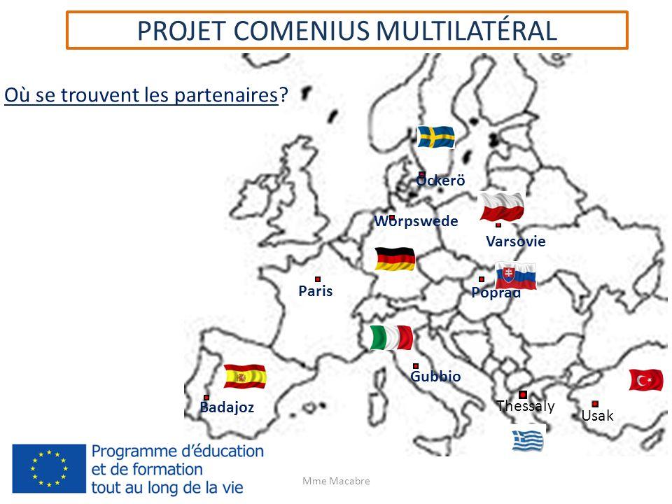 PROJET COMENIUS MULTILATÉRAL 2013-2015 Les visites et le financement Un minimum de 24 déplacements (mobilités) doit être fait.