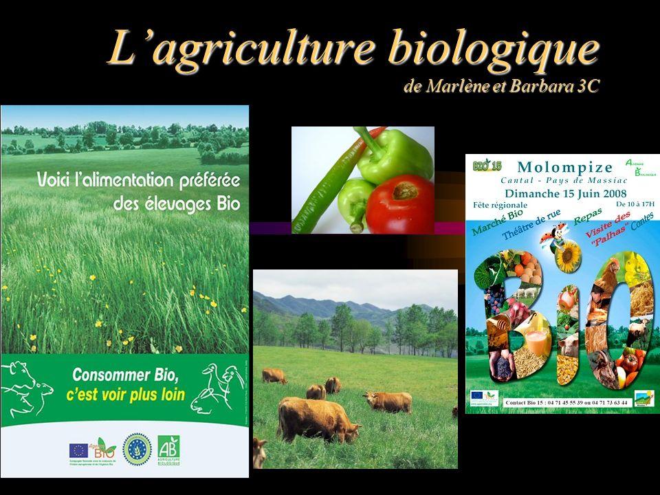 Lagriculture biologique de Marlène et Barbara 3C