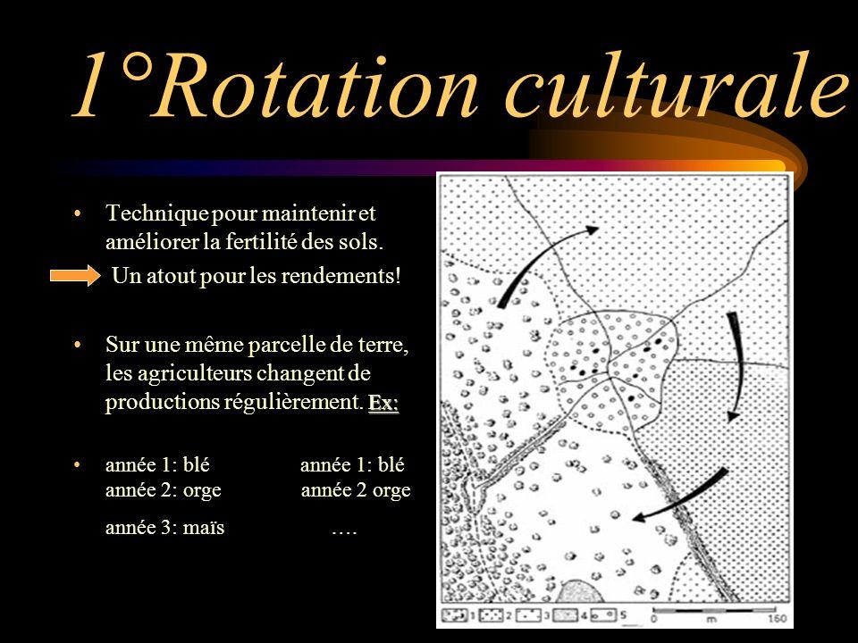 1°Rotation culturale Technique pour maintenir et améliorer la fertilité des sols.