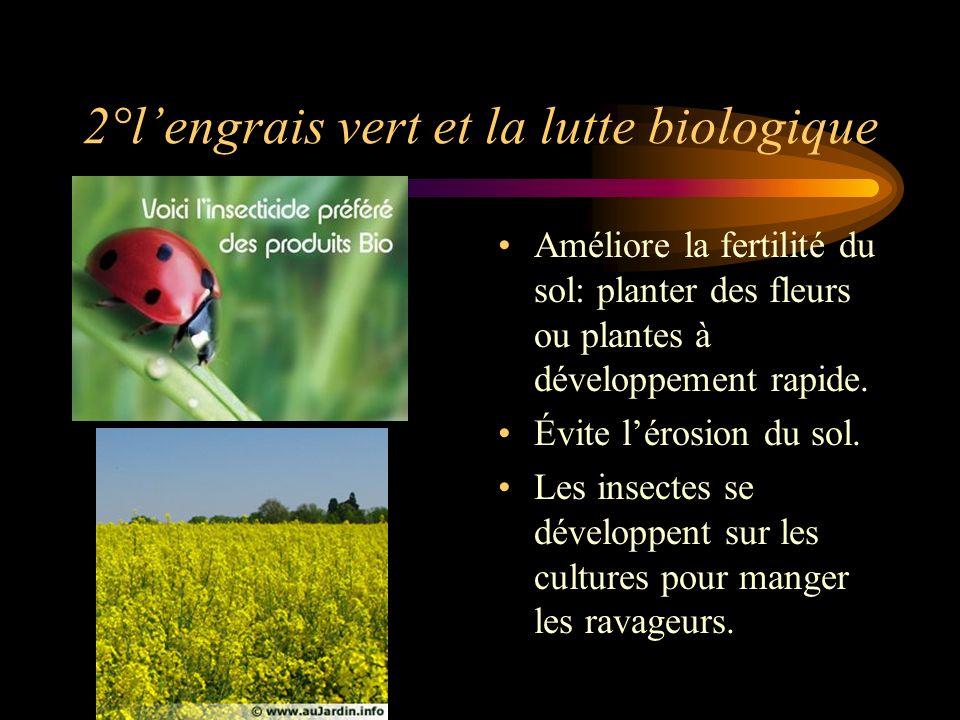 2°lengrais vert et la lutte biologique Améliore la fertilité du sol: planter des fleurs ou plantes à développement rapide.