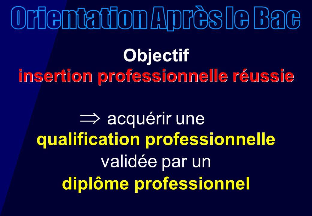 Objectif acquérir une qualification professionnelle validée par un diplôme professionnel insertion professionnelle réussie
