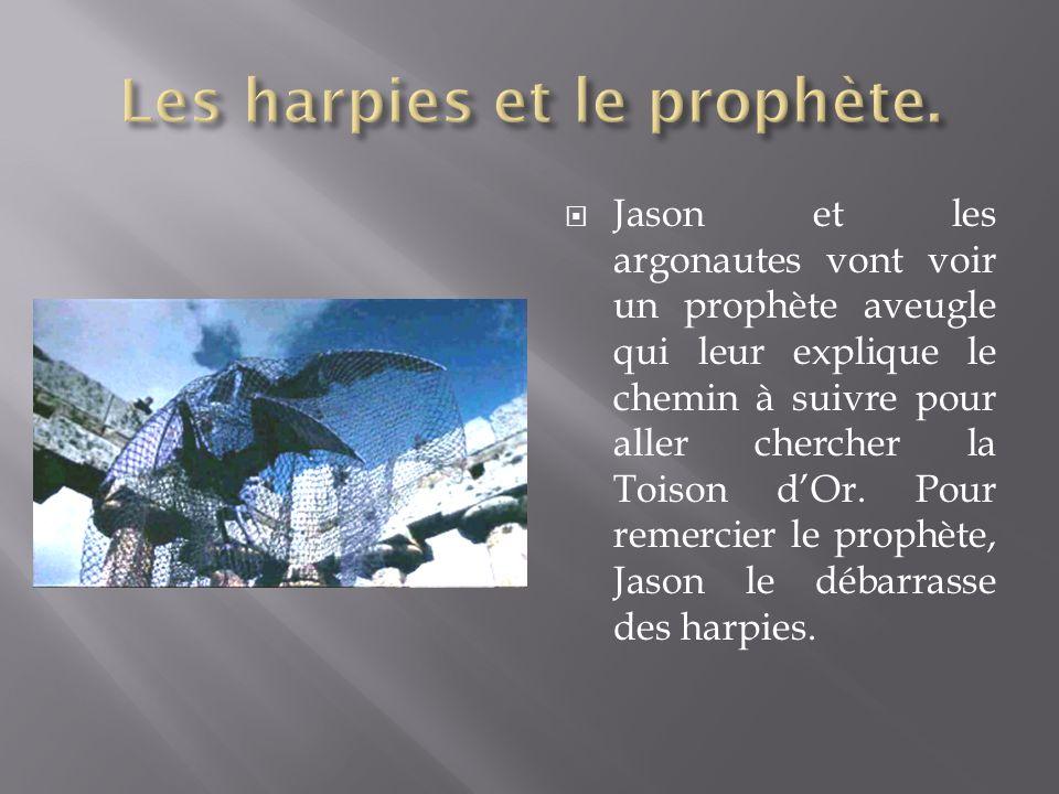 Jason et les argonautes vont voir un prophète aveugle qui leur explique le chemin à suivre pour aller chercher la Toison dOr. Pour remercier le prophè