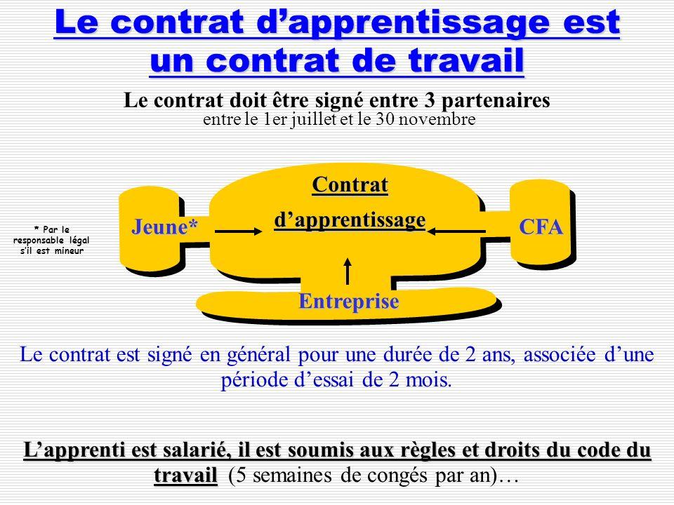 Le contrat doit être signé entre 3 partenaires entre le 1er juillet et le 30 novembre Contratdapprentissage Entreprise Jeune*CFA Le contrat est signé