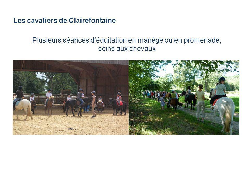 Les cavaliers de Clairefontaine Plusieurs séances déquitation en manège ou en promenade, soins aux chevaux