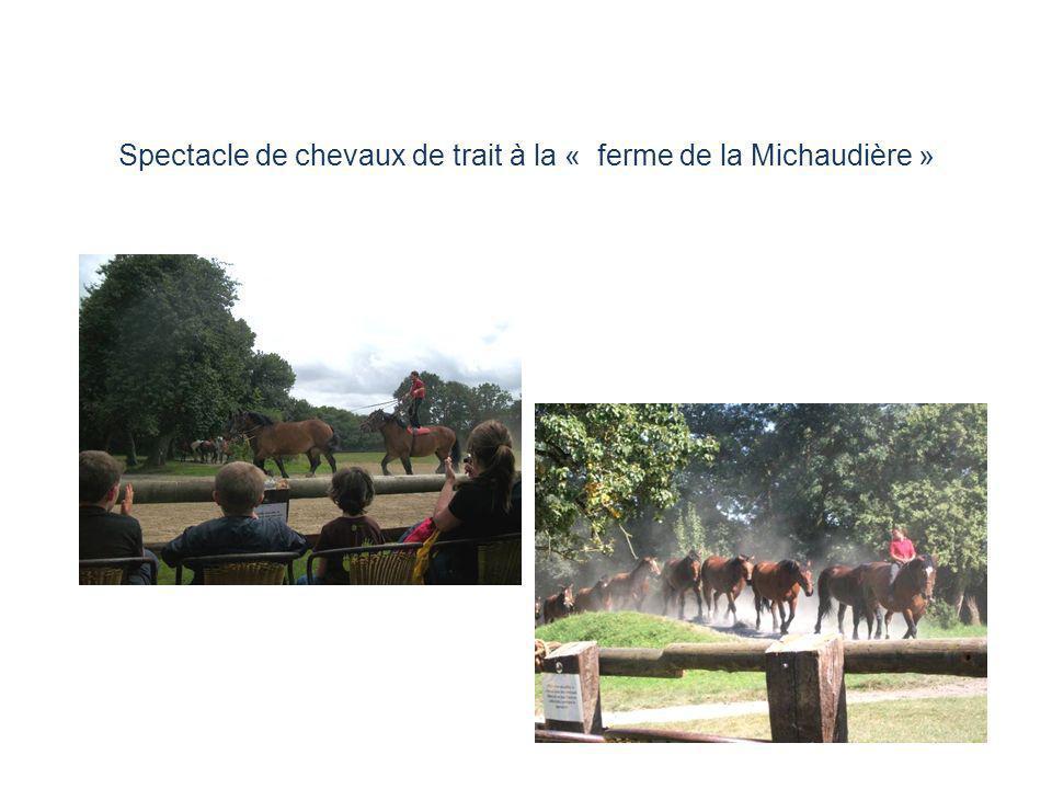 Spectacle de chevaux de trait à la « ferme de la Michaudière »